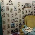 tangie_studio_LR (18)